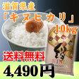 【27年産】「キヌヒカリ」滋賀県産 白米 10kg 【あす楽対応】【RCP】