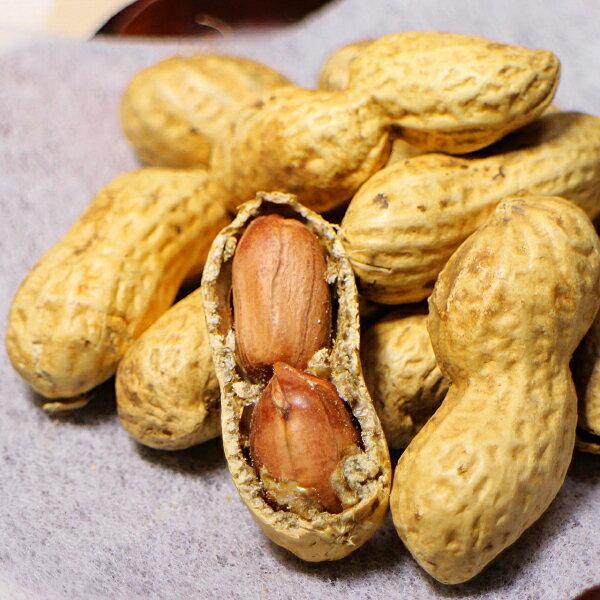 深澤ピーナッツ さや煎 千葉半立 八街産落花生 480g(160g×3袋)