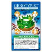 【送料無料】葉酸代謝遺伝子検査キット(お取り寄せ品) 4580184401276