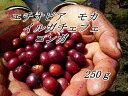 エチオピア モカ イルガチェフェ コンガ【レモンスカッシュのような最高級モカ】◆250g◆ 浅煎り