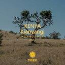 ケニア キアンヤンギ 250g 浅煎り / スペシャルティ コーヒー 豆 ドリップ ストレート 酸味 甘い さわやか ブラック 自家焙煎 珈琲 専門 富久栄 ふくえい fukuei coffe