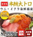 【送料無料】お得な増量版!本マグロ大トロ、無添加うに、北海道いくらの海産物 三冠