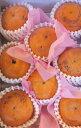 シンデレラ太秋 8玉~9玉(極小玉) 11月より収穫発送します