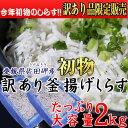 【訳あり】愛媛県産 「新物」釜揚げしらす2kg
