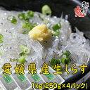 【沸騰ワード10 TV紹介!】愛媛県産 福島さんの生しらす1kg(250g×4パック)