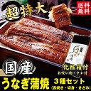 あす楽 まだ間に合う 土用丑の日 お中元 国産うなぎ3種セット 送料無料 うなぎ 鰻 ウ