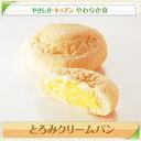 とろみクリームパン【/やわらか食、介護食、嚥下訓練にも(ご自宅用)】
