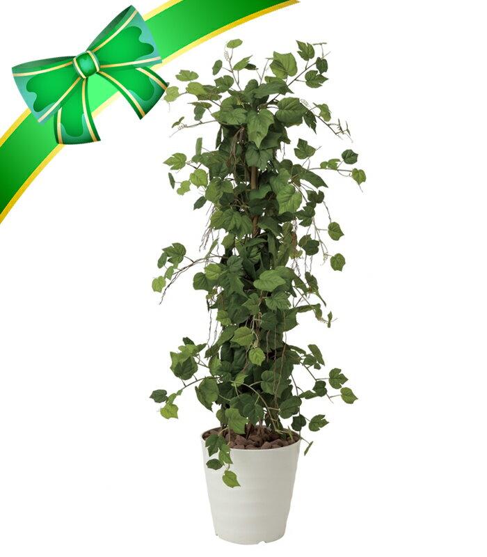 《メーカー直送品》【送料無料】光の楽園 359B350グレープツリー H1.5消臭/新築祝い/開店祝い/開業祝い/開院祝い/引越し祝い/敬老の日/誕生日/光触媒/フラワー/造花/観葉植物 空気までクリーンにしてくれる、花と緑。エバーグリーン。