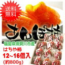【クーポン利用で20%オフ】【送料無料】 はちや柿のあんぽ柿 (約800g)