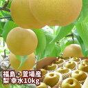 梨の名産地 ふくしま かやば梨 幸水 10kg箱 24...