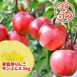 【あす楽対応】 福島県産 サンふじ りんご 4.5kg箱 (12〜25玉入) 訳あり ご家庭用 リンゴ 大きさ 不揃い 傷 訳ありリンゴ 蜜入 お得 お歳暮 傷あり キズあり おいしい