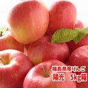 福島県産りんご(陽光)、5kg箱(13〜18玉入)。4〜5人向けのサイズ。 【発送:10月8日頃〜10月末頃まで予定】10P07Nov15