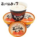 【送料無料】あんぽ柿 アイス(6個入)干し柿(あんぽ柿)を贅沢に使ったアイスクリーム♪