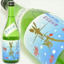 特別純米酒 半蔵 辛口 生貯蔵金魚ラベル 720ml【三重県伊賀 大田酒造】