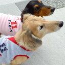 【アウトレットセール】No.11アップリケトレーナー【メール便1枚までOK】【返品不可】【犬服 ドッグウエア ダックス チワワ トイプードル 小型犬 ペット服】
