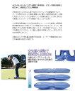 タバタ GV-0191 藤田パッティングディスク パター練習器 練習器具 Tabata Fujita Putting Disc