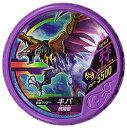 仮面ライダー ブットバソウル/DISC-SR016 仮面ライダーキバ 飛翔態 SECRET
