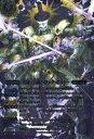 バトルスピリッツ BS19-X02冥府三巨頭バロック・ボルドーX バトスピ 剣刃編 第1弾 聖剣時代