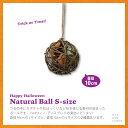 ショッピングhalo @ ナチュラル ボール Sサイズ SPICE スパイス RSHR3021 ハロウィン HALOWEEN Natural Ball かぼちゃ オブジェ 壁掛け インテリア 雑貨 オバケ 飾り オーナメント 松ぼっくり