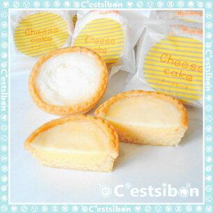 セシボン サワーチーズケーキ