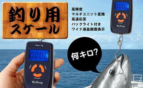 魚計量器 魚釣り用 送料無料 釣り上げた魚の重さをその場で量れます ポータブル型デジタル計量器 H1960B