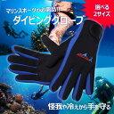 ダイビンググローブ マリンスポーツ 怪我/防寒対策 サーフィン 寒中水泳 シュノーケリング手袋 DG001