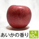 あいかの香り 等級D (小玉) 10kg 20〜27玉x2段/送料無料 葉とらず 味極み りんご 減農薬 長野県産 産地直送