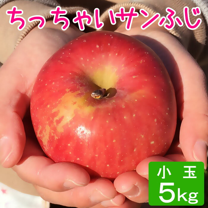 サンふじ 等級D (小玉) 5kg 20〜27玉/送料無料 葉とらず 味極み りんご 減農薬 長野県産 産地直送