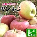 加工用 青玉 りんご サンふじ 約15キロ 18〜25玉x3段