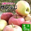 加工用 青玉 りんご サンふじ 約5キロ 10〜25玉 5kg