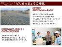 送料無料 鳥取県産きぬむすめ 10kg 5kg×2 金の袋 特A米令和元年産 新米1等米
