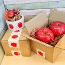 りんご テープ 50mm×10M かわいい 梱包 りんご デ...