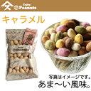 【Enjoy Peanuts キャラメル】   千葉県産落花生をサクサクコーティング。濃厚な甘さ。落花生、人気アイテム、手土産、お土産、詰合せギフトにも。気軽に楽しむ千葉のピーナツ...