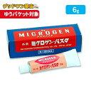 【第1類医薬品】ミクロゲンパスタ(6g)【啓芳堂製薬】