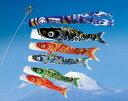 5m颯風鯉のぼり 昇龍吹流6点セット【鯉幟】【鯉のぼり】