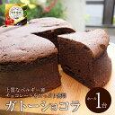 送料無料 ガトーショコラ 5号 (4〜5名分) チョコレート ショコラ ★2個同時購入でドラ焼き1箱プレゼント!