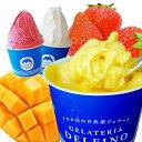 ショッピングアイスクリーム 【送料無料】 選べるお試しジェラート5個セット 香料・着色料不使用 のし無料 アイス アイスクリーム