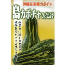 カボチャ (在来品種) 種 【沖縄島カボチャ ひょうたん型 20ml】