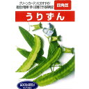 四角豆 種 【うりずん 小袋】