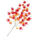Momiji-spray
