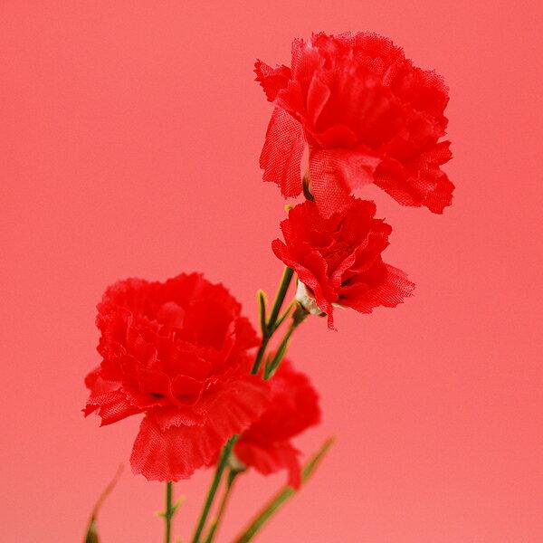 【シルクフラワー】カーネーション 母の日【領収書...の商品画像