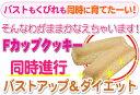 ★税抜5000円以上で送料無料★Fカップクッキー