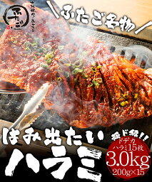 送料無料 ふたご名物はみ出たいハラミ 3kg!バーベキュー(BBQ)に! 焼肉 ホルモン ハラミ3kg