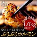 送料無料 厳選牛ぷりぷりホルモン1kg (200g×5パック)メガ盛りセット 牛シマチョウ