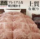【日本製・羽毛布団】プレミアムゴールドラベル 国産 羽毛ふとん シングルサイズ 1kg ホワイトダックダウン