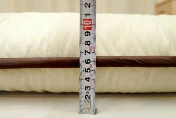 ��/�������ߤ�����/�����ĸ����11cm���Ӻ����SEK�ɥ��˹����ɽ��ɥ���5�ؼ��ܥ�塼�������ĥ��륵����(100×210cm)������/�ߤ�����/�ߤ��դȤ�