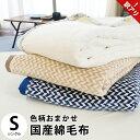 【訳あり】【色柄込み】色柄おまかせ 国産 綿毛布 シングル 約140×200cm 毛羽 綿100%
