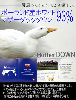 ���äפ��������ġ�����̵���۹��������ۤ�����165mm�ʾ�ڥ?��르����ɥ�٥�ۿ�����������ù��ݡ����ɻ��ۥ磻�ȥޥ����������93%����ѥ���åײù���������/������/����ڳڥ���_���������Ρ�RCP��