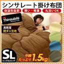 【年内発送可能】シンサレート掛け布団 シングル 中綿約1.5kg 防ダニ高密度生地 抗菌