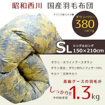 ��1000��OFF�����ݥ����Ѳġۡ�����̵���ۥ�����90��1.3kg��������������������۱�������/�ݤ����ĥۥ磻�ȥ�����������90��380dpΩ�Υ���ȥ��饵�������ĥ�����150×210cm�ˡ�SARASA��